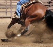 Una fine sulla vista di un cavallo e di una sporcizia di volo immagini stock