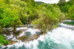Una flodforsar Arkivfoton