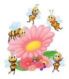 Una flor grande rodeada con las abejas libre illustration