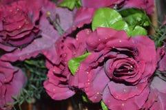 Una flor rosada Imagenes de archivo
