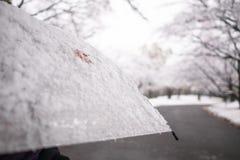 Una foglia di acero e neve rosse sull'ombrello traslucido Fotografia Stock Libera da Diritti