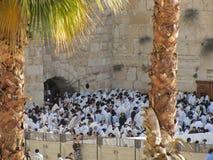 Una folla della gente che prega a Dio alla parete lamentantesi di Gerusalemme con due palme sulla parte anteriore Fotografia Stock Libera da Diritti