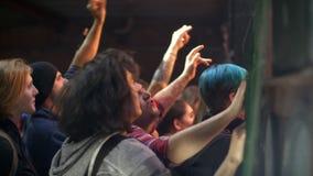 Una folla della gente che salta ad un concerto rock archivi video