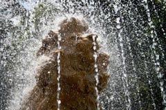 Una fontana con una statua di un leone Fotografie Stock Libere da Diritti