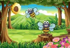 Una foresta con due api vicino all'alveare Immagini Stock Libere da Diritti