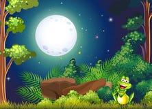 Una foresta con una rana sorridente vicino alla roccia Fotografia Stock