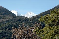 Una foresta e una montagna innevata sulle alpi italiane Immagine Stock