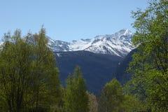 Una foresta e una montagna innevata sulle alpi italiane Fotografia Stock
