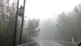 Una foresta in una nebbia archivi video