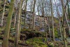 Una foresta nelle montagne nella stagione invernale tarda Fotografia Stock Libera da Diritti