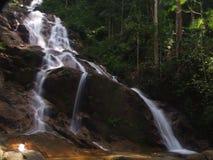 Una foresta pluviale tropicale piacevole con una cascata piacevole fotografia stock