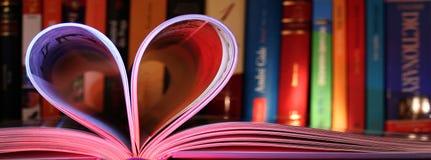 Amore per i libri Fotografia Stock Libera da Diritti