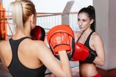 Una formazione femminile di due pugili fotografia stock