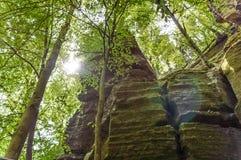 Una formazione rocciosa alta si è appannata dalle cime dell'albero Fotografie Stock
