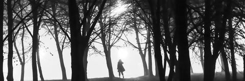 Una foto blanco y negro de un silhoutte de una persona entre los árboles en la noche Fotos de archivo