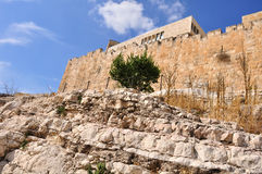 Vecchia Gerusalemme Temple Mount Immagine Stock Libera da Diritti