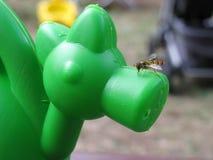 Una fotografía de una abeja que se sienta en una lona verde en una salvadera Fotografía de archivo