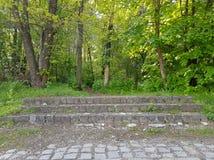 Una fotografía de escaleras en bosque, Vodno foto de archivo