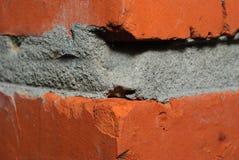 Una fotografía macra de la esquina del ladrillo rojo Fotografía de archivo libre de regalías