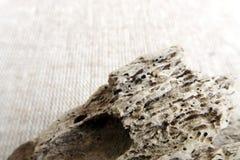 Derive la textura ascendente del cierre de madera Fotos de archivo libres de regalías