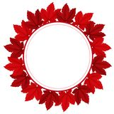Una frontera frondosa roja Fotografía de archivo
