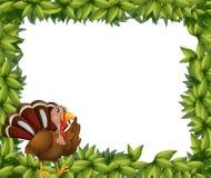 Una frontera verde del marco con un pavo Fotografía de archivo