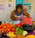 Una frutta e una verdura stanno nei tropici Immagini Stock