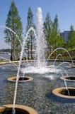 Una fuente en el Potomac en el puerto nacional Foto de archivo libre de regalías