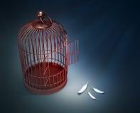 Una gabbia per uccelli aperta con le piume Fotografia Stock