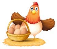 Una gallina y una cesta de huevo Imagenes de archivo