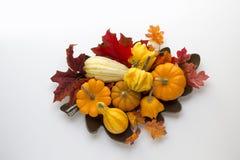 Una generosidad de calabazas, de calabazas y de la caída deja el tiro desde arriba en un fondo blanco Foto de archivo libre de regalías