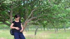 Una giovane, bella, ragazza incinta, vicino ad un albero, in una maglietta nera archivi video