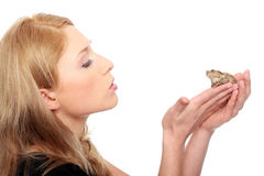 Una giovane donna bionda splendida che bacia una rana Fotografia Stock Libera da Diritti