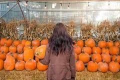 Una giovane donna castana che tiene una zucca davanti ad una fila delle zucche su un'azienda agricola fotografia stock