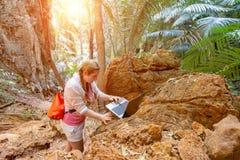 Una giovane donna lavora con un computer portatile nelle montagne e nei boschetti tropicali Lavoro a distanza nel viaggio Sguardi immagini stock