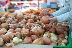 Una giovane donna sceglie le cipolle in un supermercato nel dipartimento di verdure fotografie stock libere da diritti