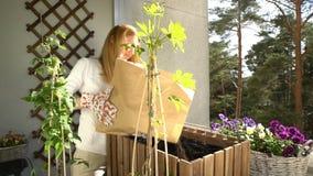 Una giovane donna versa la terra nel contenitore e nella piantatura delle piantine sul balcone stock footage