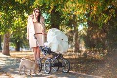 Una giovane madre cammina con un bambino in un passeggiatore fotografie stock libere da diritti