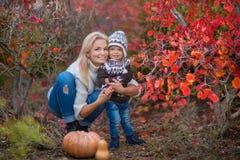 Una giovane madre ed il suo divertimento di caduta del bambino Fotografia Stock