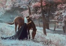 Una giovane principessa in un vestito d'annata con un treno lungo, con la tenerezza e l'amore, abbraccia il suo cavallo La ragazz fotografie stock