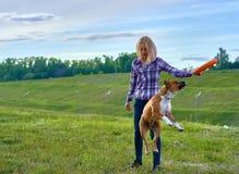 Una giovane ragazza bionda sta preparando un cane dell'americano Staf della razza fotografie stock