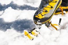 Una giovane viandante del tipo veste i ramponi rampicanti sopra le scarpe di alpinismo per la camminata attraverso il ghiacciaio Immagini Stock Libere da Diritti