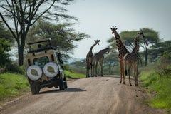 Una giraffa e una jeep di quattro masai sulla pista Fotografie Stock