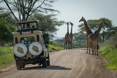 Una giraffa e una jeep di quattro masai sulla strada Immagini Stock Libere da Diritti