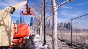 Una grúa para cortar ramas en un árbol en Jersey City imagenes de archivo