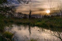 Una gran puesta del sol Fotografía de archivo libre de regalías