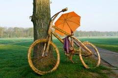 Una grande bicicletta con un ombrello immagine stock libera da diritti