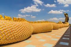 Una grande custodia del serpente del Naga Immagini Stock Libere da Diritti
