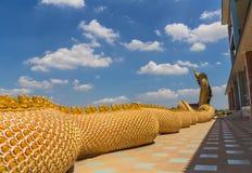 Una grande custodia del serpente del Naga Immagini Stock