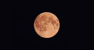 Una grande luna rotonda nel cielo scuro Immagine Stock